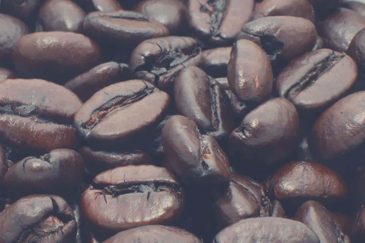 extreme close up of a cup filled with dark roast coffee beans